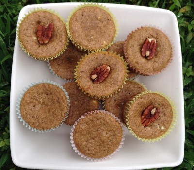 Cinnamon Applesauce Protein Muffins